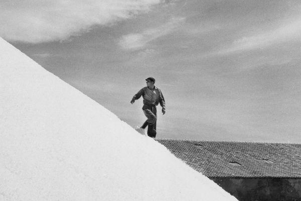 La photographe et cinéaste Agnès Varda est mise à l'honneur dans la région au festival Cinémondes et à l'Institut pour la Photographie à Lille.