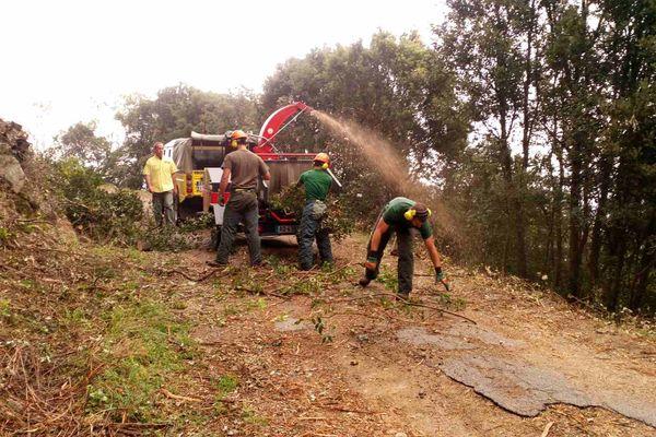 Les forestiers sapeurs débroussaillent la route qui mène au château de la Punta, le 22 avril 2016.