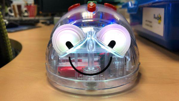 Les maternelles apprennent avec Blue-Bot, un jouet motorisé en forme d'abeille qui leur apprend les déplacements dans l'espace.