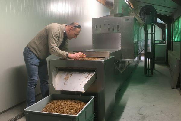 Installée dans un ancien poulailler à Saint-Ignat dans le Puy-de-Dôme, la société Invers produit actuellement 1 tonne de ver de farine par mois. Mais elle espère augmenter fortement ses volumes.