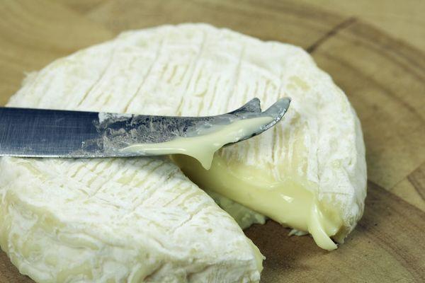 Les fromages possiblement contaminés par la bactérie E.Coli sont des Saint-Marcellin et Saint-Félicien.