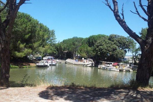 Sallèles-d'Aude - vue du Canal du Midi, depuis le terrain du future village de retraite pour homosexuels - 31 juillet 2013.