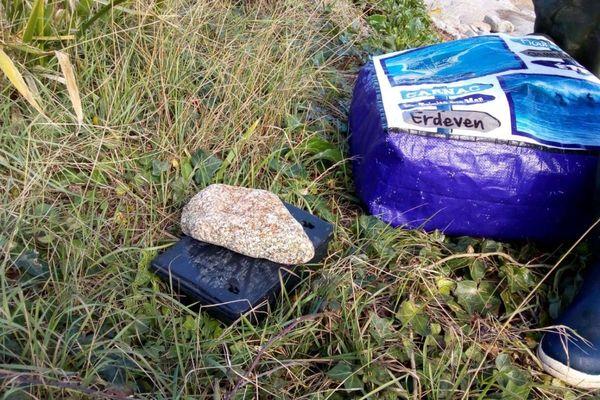 Des appâts mortels ont été mis dans les pièges à rat. Les membres du GONm vérifieront chaque jour si un rongeur est passé prendre la nourriture.