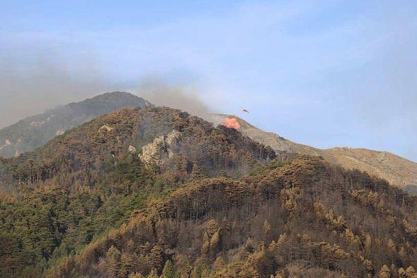 Les opérations de lutte aerienne se poursuivent à Palneca (Corse du Sud)