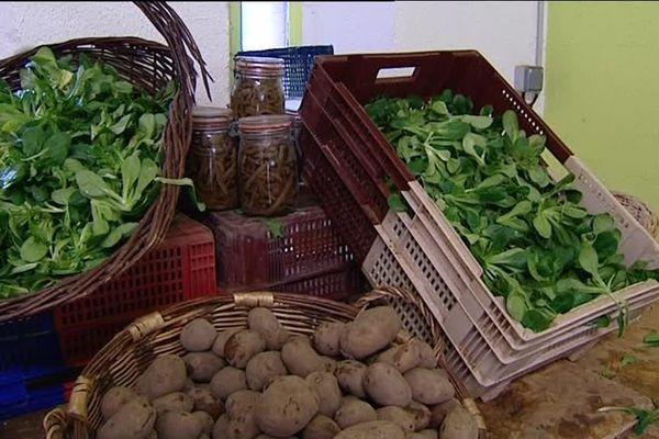 Les AMAP : une agriculture paysanne qui attire les jeunes producteurs.