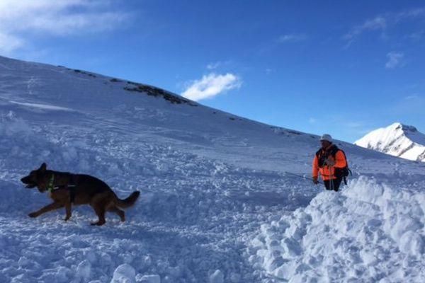 L'hiver se déroulent des formations de chiens d'avalanche. Aux Orres, 5 jeunes chiens plus 12 chiens sont déjà agréés. Les formations sont dispensées faites par l'ANENA (Association Nationale Etude Neige et Avalanches)