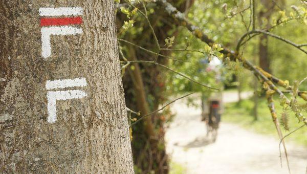 Le saviez-vous ? Le parc des prairies saint Martin est traversé par le GR39