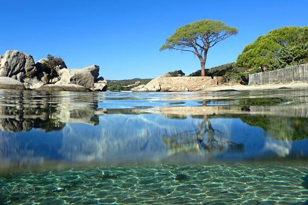 ILLUSTRATION - Paysage de Corse ensoleillée.