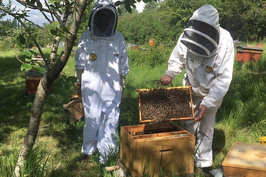 Des apiculteurs tenant un cadre de ruche dadant.