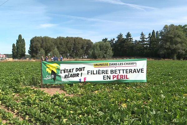 Les agriculteurs réclamaient des mesures gouvernementales depuis plusieurs mois.