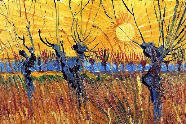 Saules tetards au coucher de soleil, Van Gogh, 1888 (détail)