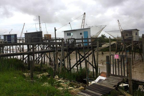 C'est dans le l'estuaire de la Gironde que le parc doit être implanté.