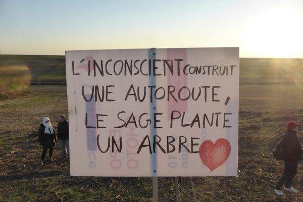 Des militants anti-GCO ont planté des arbres là où Vinci avait déboisé