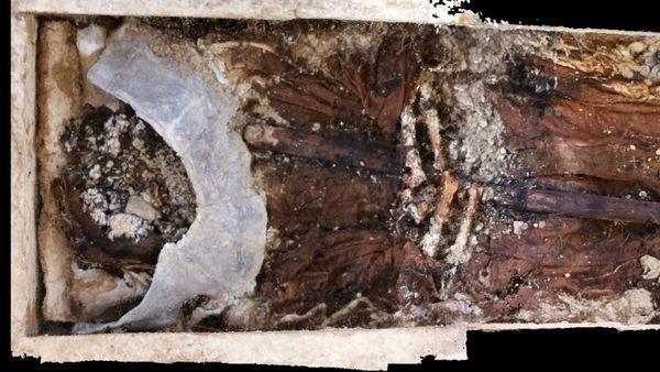 Une collerette de plomb a été posée près du visage d'Albéric de Braine pour une raison encore inconnue.