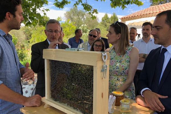 Villeneuve-lès-Avignon (Gard) - la secrétaire d'Etat était en visite chez un apiculteur - 11 juillet 2019