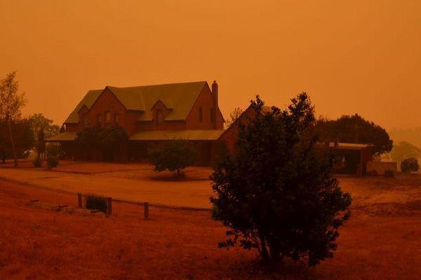 D'épais nuages de fumée recouvrent des zones entières à proximité des incendies.