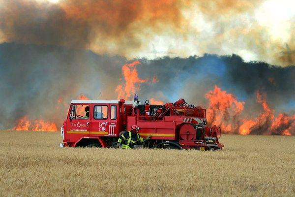 Le colza, l'orge ou le blé s'enflamment très facilement, d'où des feux qui se propagent très rapidement. Photo d'illustration.