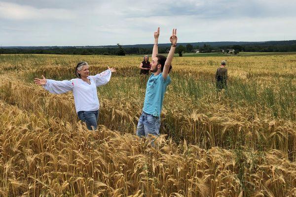 De nombreux curieux sont venus découvrir le crop circle de Menetou-Salon.