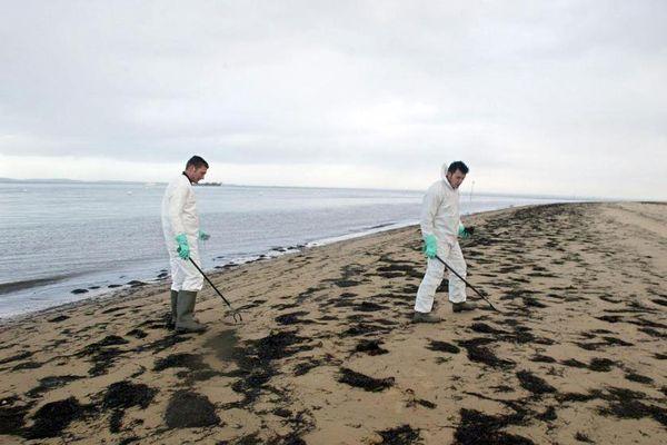 Des membres d'une équipe de nettoyage ramassent des galettes de fioul sur les plages du bassin d'Arcachon (Gironde), le 23 janvier 2013.