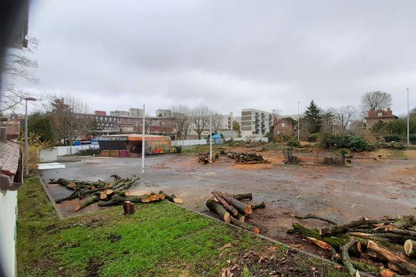 Les premiers arbres ont été arrachés dès 6 heures du matin ce 7 décembre