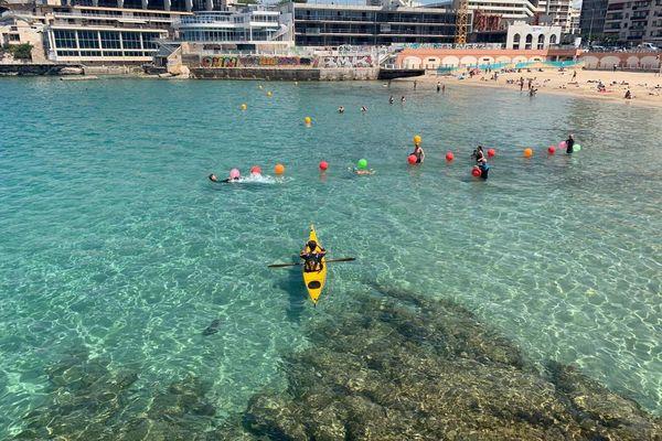 Les Libres Nageurs partent des Catalans pour se mettre à 300m de la côte.