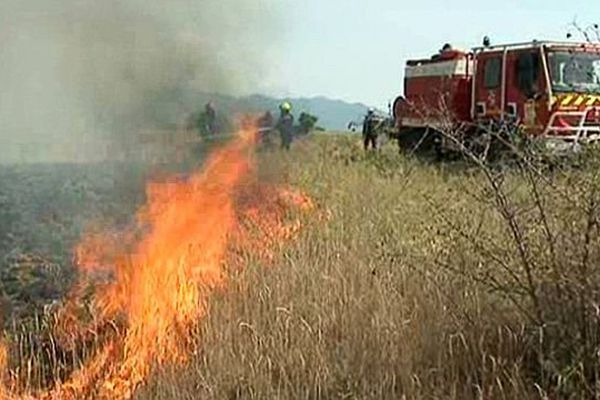 Un départ de feu dans les Pyrénées-Orientales - 14 juillet 2015.