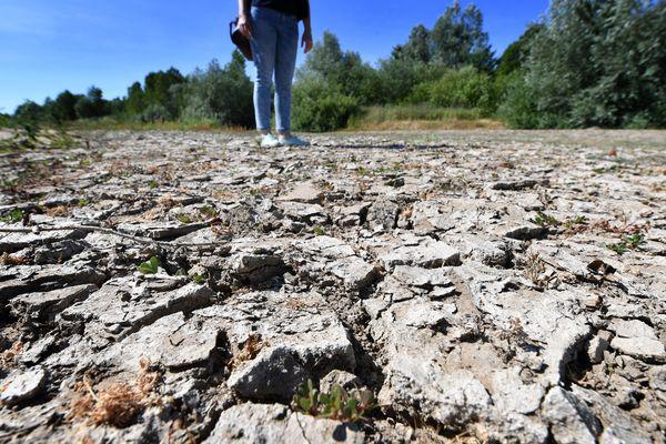 La sécheresse a durement affecté les sols et le bâti en 2018, tout comme elle est en train de le faire cette année