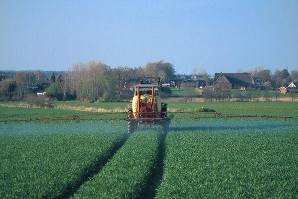 Des pesticides interdits depuis 10 ans continuent de se retrouver dans l'air que l'on respire dans les Hauts-de-France.