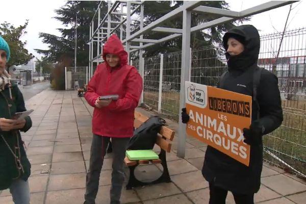 Un peu moins d'une dizaine de militants Rassemblement halte exploitation animale ont tracté devant le cirque de Saint-Pétersbourg, ce dimanche 2 février.