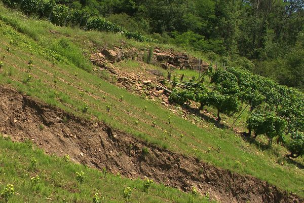 Glissement de terrain dans le vignoble de l'AOC Château-Chalon
