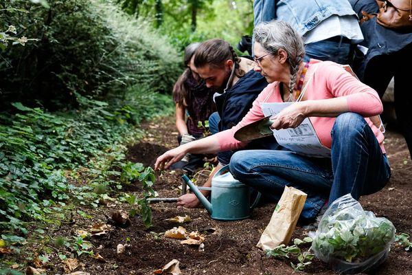 Du parc de la patte d'oie à la fontaine Subé de la place d'Erlon, une dizaine de militants écologistes ont planté des fraisiers, framboisiers, plants de tomates pour sensibiliser le public au consommer local / Reims, le 17 juin 2020
