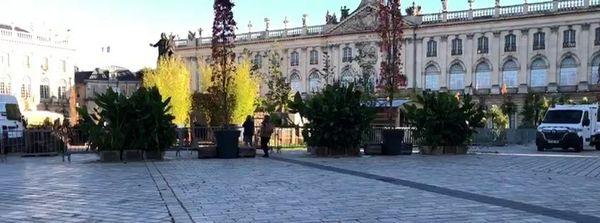 Le jardin éphémère de la Place Stanislas bientôt démonté lors du second confinement.