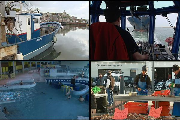 L'emploi maritime regroupe près de 900 métiers. Pôle Emploi les met en lumière cette semaine en Normandie