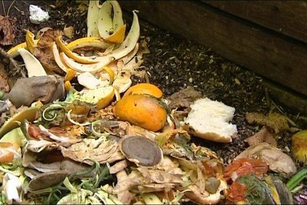 Les bio-déchets serviront d'engrais naturels pour les jardinières et autres plantations.