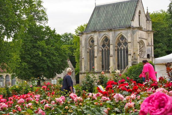 Journées de la Rose au Domaine de Chaalis