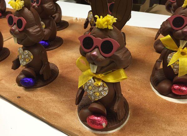 Des lapins à lunettes, plus petits que les autres années