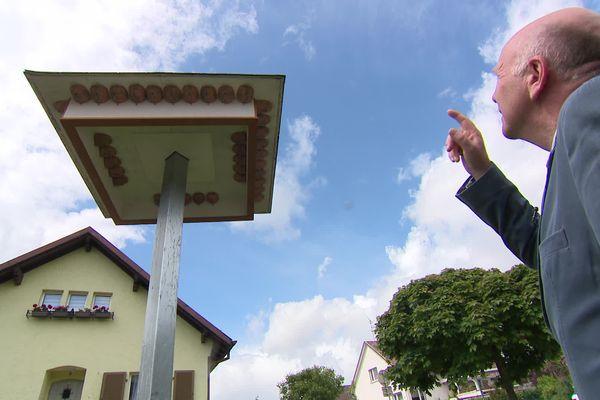 L'adjoint au maire de Saint-Louis, Philippe Knibiely, au pied d'un hôtel à hirondelles récemment installé.