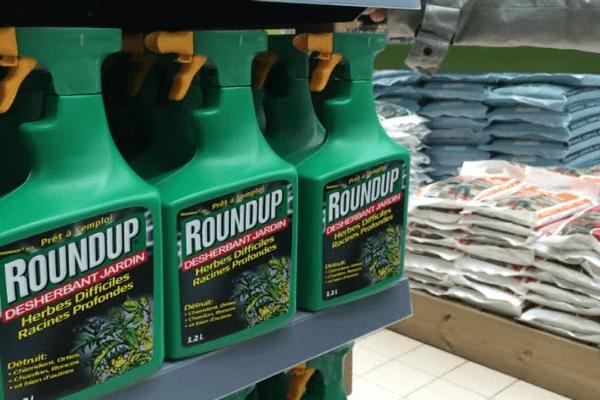 """Le glyphosate l'un des principaux composants du pesticide est jugé """"cancérigène probable"""" par l'OMS."""