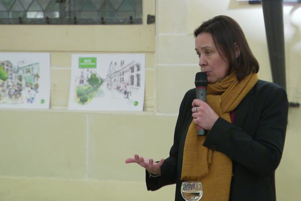 Stéphanie Modde, en meeting à Dijon (archives - février 2020)