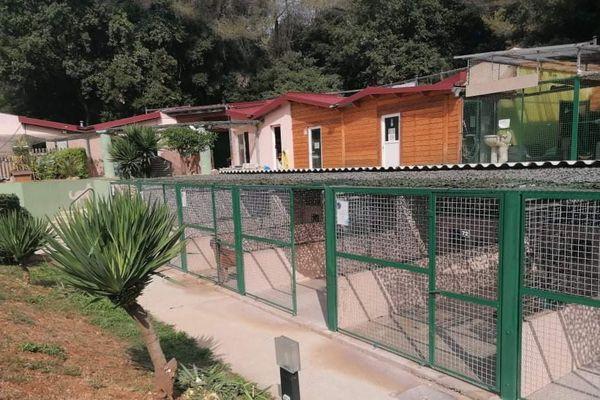 Le refuge de l'Espoir accueille des dizaines d'animaux abandonnés par leurs propriétaires ou des animaux errants sur la voie publique.