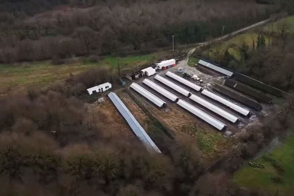 L'élevage de visons filmé par L214 se situe près de la Roche-sur-Yon.