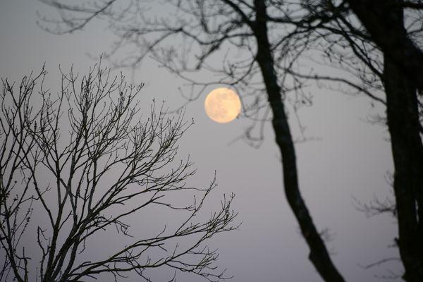 A l'œil nu, la lune semble plus grosse et plus visible.