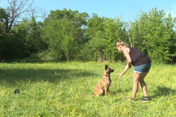 Elsa Guyot est éducatrice canine. Installée en Ardèche, à Saint-Didier-sous-Aubenas, elle aide les propriétaires à canaliser leur chien. Une vocation née de sa propre expérience après une adoption à la SPA.