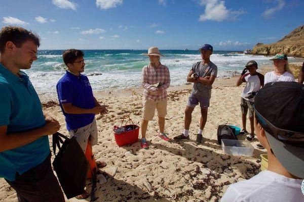Nettoyage d'une plage à Saint-Barthélémy