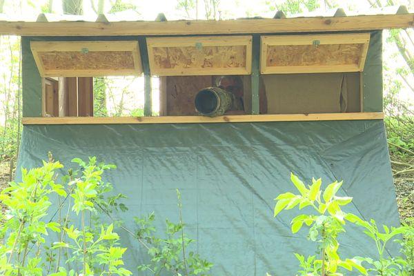 Jean-Michel Lecat se cache dans ces cabanes afin de mieux photographier les animaux.