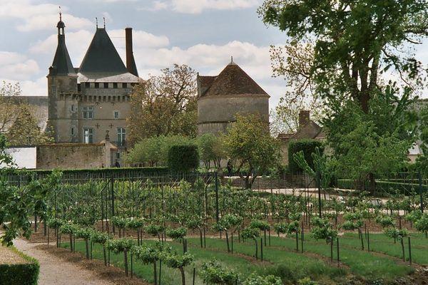Le Château de Talcy (Loir-et-Cher)
