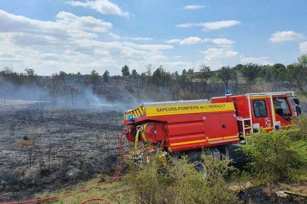 L'incendie a pu être circonscrit par les sapeurs-pompiers sur une surface de quatre hectares.