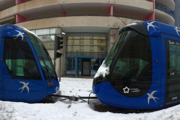 En février 2018, les tramways ont circulé  dans Montpellier jusqu'au blocage total, à l'exemple de ces deux rames stoppées boulevard de Strasbourg
