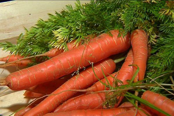 Des légumes transformés par la conserverie pour les maraîchers qui peuvent ainsi lisser leur activité et multiplier leur offre pour leur client