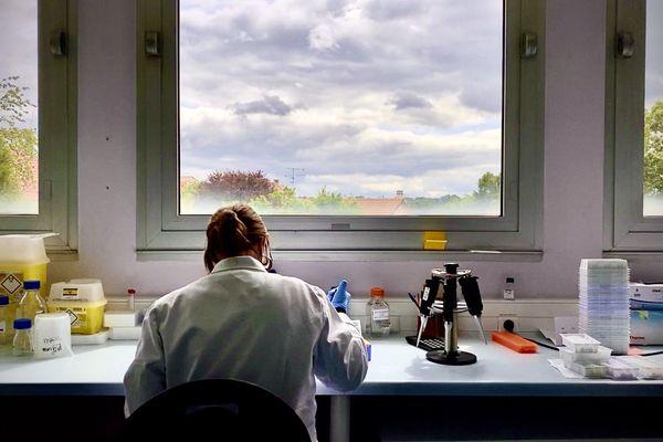 B Cell Desgin, à Limoges, travaille sur l'élaboration d'un test sérologique innovant.